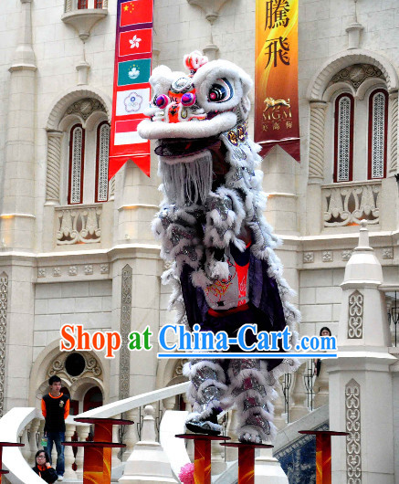 Asian Chinese Lion Mascot