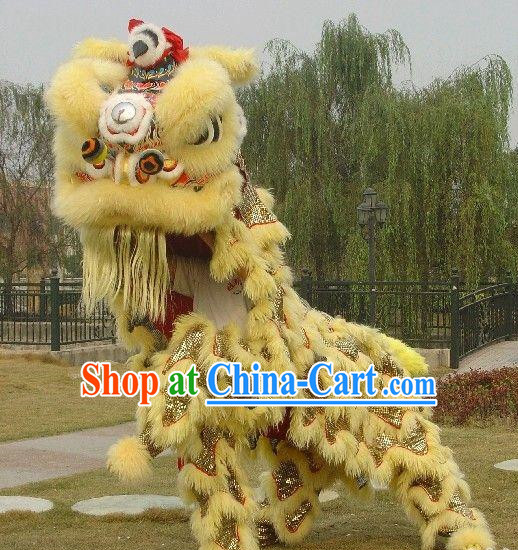 Asian Chinese Martial Lion Costume