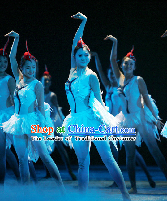 Chinese Classic Folk Swan Dance Costumes and Headwear Complete Set for Women