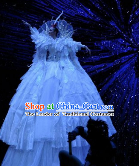 Giant Chinese Stage Dance Costumes Complete Set for Women