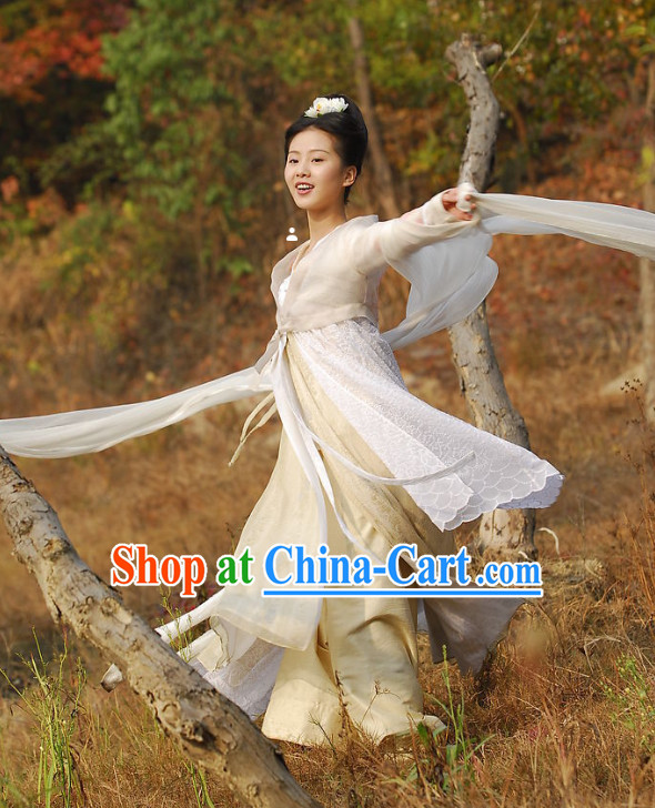 Ancient Chinese Fairy Movies Costume and Hair Accessories