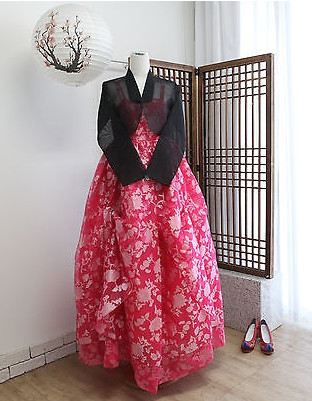 Asian Fashion Korean Hanbok Clothes for Women