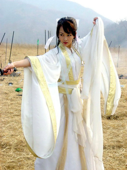 China Swordmen Costume Carnival Costumes Dance Costumes Traditional Costumes for Women