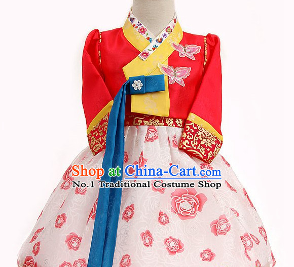 Folk Korean Foral Special Occasion Dress for Children