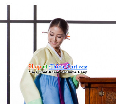 Korean Traditional Dresses Lady Plus Size Clothes Complete Set