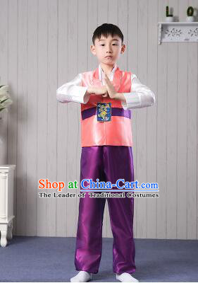 Korean Traditional Dress for Children Boy Clothes Kid Costumes Stage Show Dancing Orange Top Purple Pants