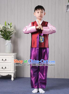 Korean Traditional Dress for Children Boy Clothes Kid Costumes Stage Show Dancing Red Top Purple Pants