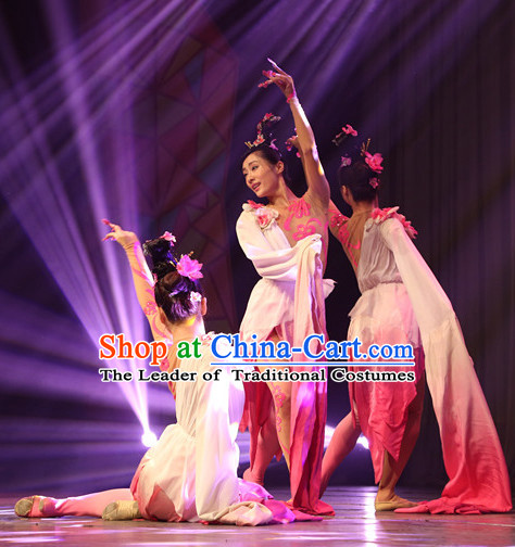 Chinese Classical Long Sleeves Dance Costumes Complete Set for Women or Gilrs