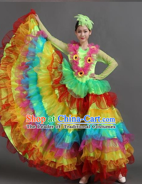 Chinese Ballroom Dance Dress for Women Girls