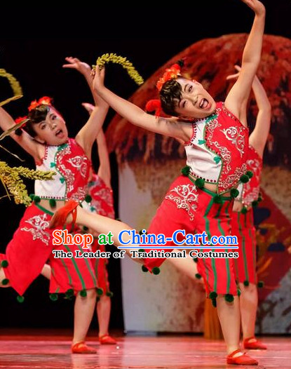 Chinese Folk Dance Costume and Headdress for Children Girls
