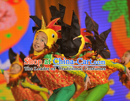 Chinese Traditional Chicken Dance Dress Dancewear Costumes Dancer Costumes Dance Costumes Chinese Dance Clothes Traditional Chinese Clothes Complete Set for Kids