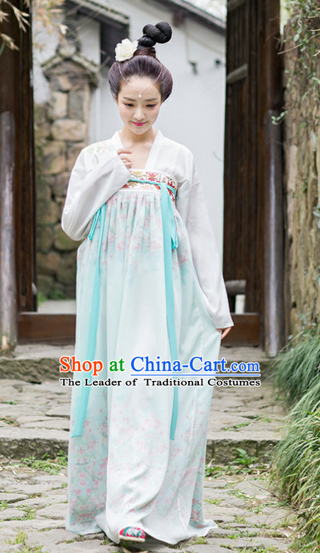 Traditional Chinese Tang Dynasty Dress Chinese Clothing Cloth China Attire Oriental Dresses for Women