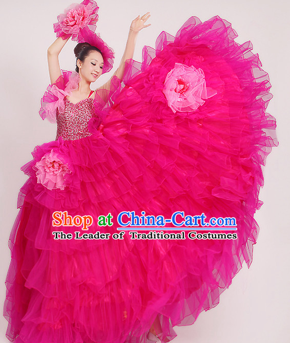 Rose Chinese Dance costume Dance Classes Uniforms Folk Dance Traditional Cultural Dance Costumes Complete Set