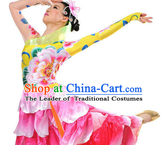 Traditional Chinese Stage Performance Ethnic Flower Dancing Costumes for Women Girls
