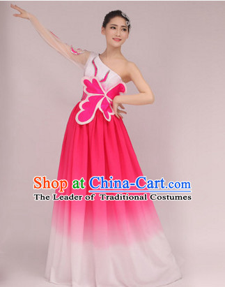 Chinese Butterfly Dance Costume Dance Costumes Fan dance Umbrella Ribbon Fans Water Sleeve Dancer Dancing Costumes Complete Set