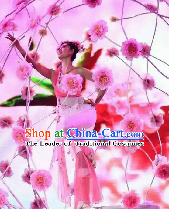 Professional Spring Festival Gala Evening Dance Costumes Dancing Costume Complete Set for Kids Adults Women Girls