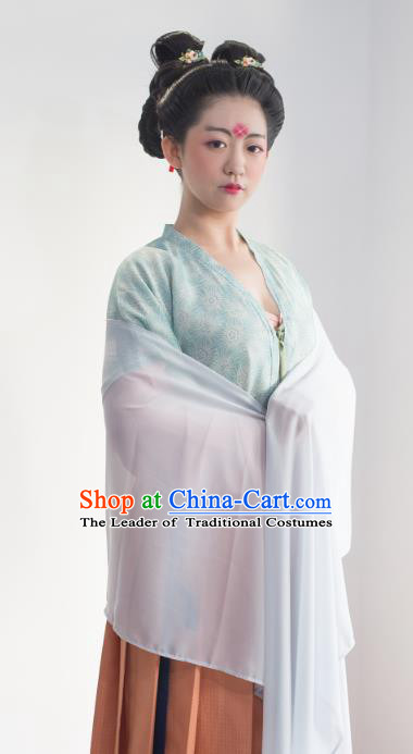 Traditional Chinese Ancient Tang Dynasty Imperial Concubine Costume Complete Set for Women