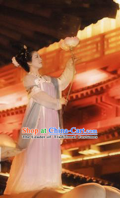 Traditional Chinese Ancient Costume Princess Silk Pink Slip Skirt, Asian China Tang Dynasty Palace Lady Hanfu Dress Clothing for Women