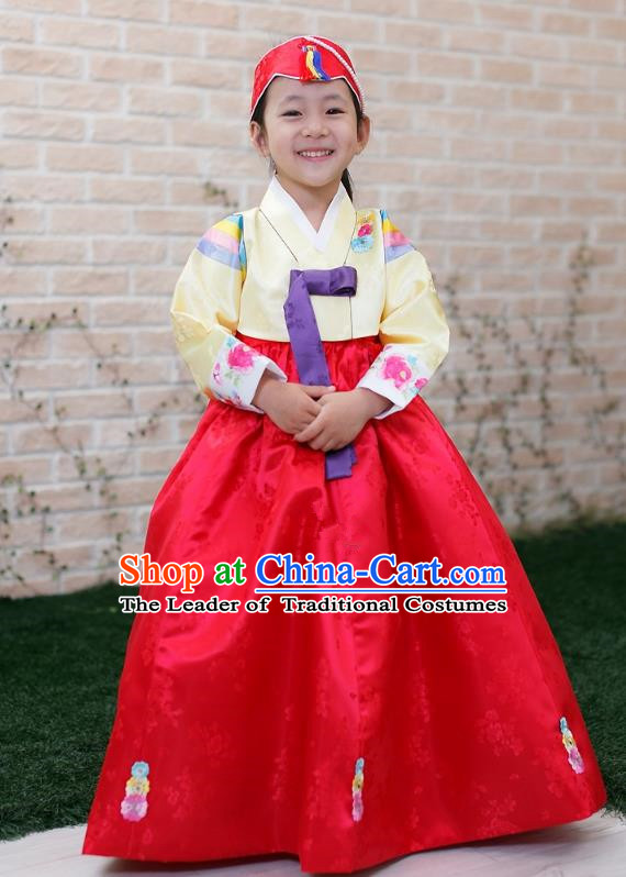Traditional Korean Handmade Formal Occasions Costume Embroidered Baby Brithday Hanbok Red Dress Clothing for Girls