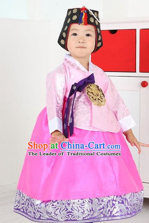 Traditional Korean Handmade Formal Occasions Costume Embroidered Baby Brithday Girls Pink Blouse and Dress Hanbok Clothing