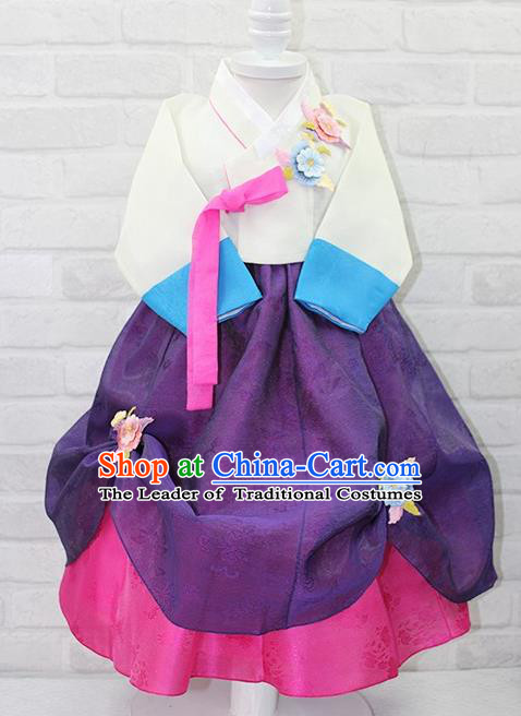 Traditional Korean Handmade Formal Occasions Costume Embroidered White Blouse and Purple Dress Bride Hanbok Clothing for Girls