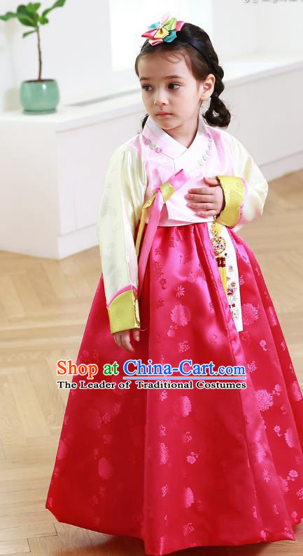 Traditional Korean Handmade Formal Occasions Costume Embroidered Baby Princess Pink Blouse and Red Dress Hanbok Clothing for Girls