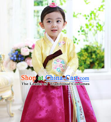 Traditional Korean Handmade Formal Occasions Costume Baby Princess Embroidered Yellow Blouse and Purple Dress Hanbok Clothing for Girls