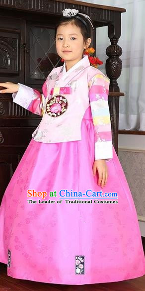 Asian Korean Traditional Handmade Formal Occasions Costume Baby Princess Embroidered Pink Blouse and Dress Hanbok Clothing for Girls
