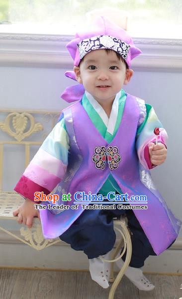 Asian Korean National Traditional Handmade Formal Occasions Costume, Palace Boys Brithday Embroidered Purple Hanbok Clothing for Kids