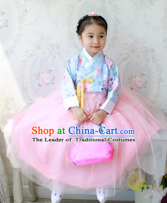Traditional Korean Handmade Formal Occasions Costume Princess Blue Embroidered Blouse and Pink Dress Hanbok Clothing for Girls