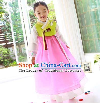 Asian Korean Traditional Handmade Formal Occasions Costume Princess Embroidered Green Blouse and Pink Veil Dress Hanbok Clothing for Girls