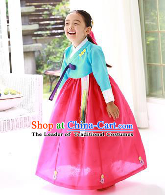 Asian Korean Traditional Handmade Formal Occasions Costume Princess Embroidered Blue Blouse and Red Dress Hanbok Clothing for Girls