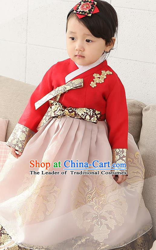 Asian Korean Traditional Handmade Formal Occasions Girls Embroidered Red Blouse and Pink Dress Costume Hanbok Clothing for Kids