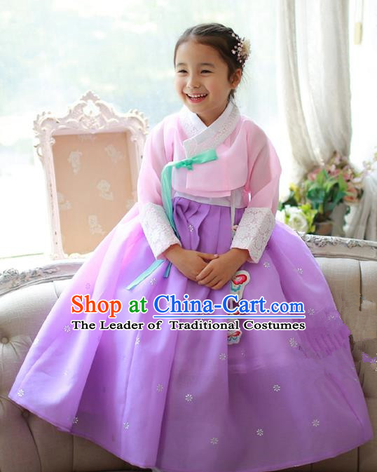 Asian Korean National Traditional Handmade Formal Occasions Girls Embroidered Pink Blouse and Purple Dress Costume Hanbok Clothing for Kids