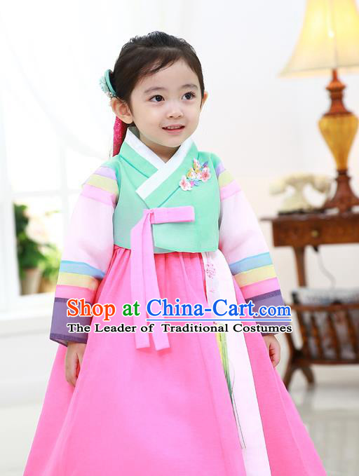 Asian Korean National Traditional Handmade Formal Occasions Girls Embroidered Green Blouse and Pink Dress Costume Hanbok Clothing for Kids
