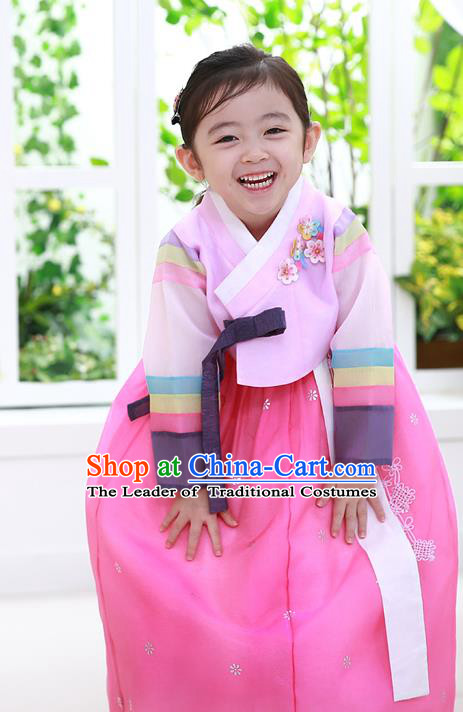 Asian Korean National Traditional Handmade Formal Occasions Girls Embroidered Pink Blouse and Dress Costume Hanbok Clothing for Kids