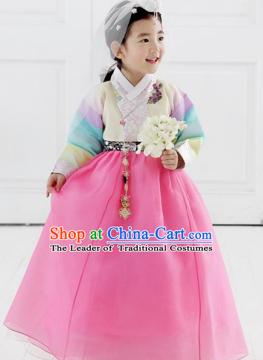 Asian Korean National Traditional Handmade Formal Occasions Girls Embroidery Beige Blouse and Pink Dress Costume Hanbok Clothing for Kids