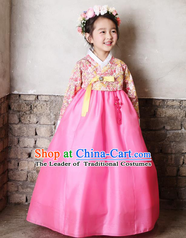 Asian Korean National Traditional Handmade Formal Occasions Girls Embroidery Hanbok Costume Printing Blouse and Pink Dress Complete Set for Kids