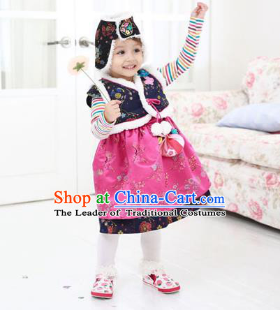 Asian Korean National Traditional Handmade Formal Occasions Girls Embroidery Hanbok Costume Blue Vest and Dress Complete Set for Kids