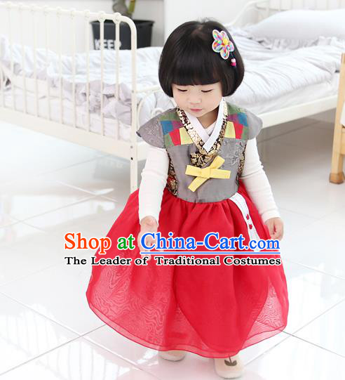 Asian Korean National Traditional Handmade Formal Occasions Girls Embroidery Hanbok Costume Red Dress Complete Set for Kids