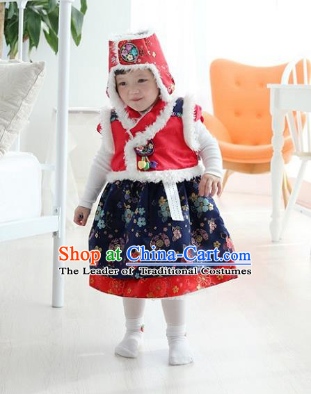 Asian Korean National Traditional Handmade Formal Occasions Girls Embroidery Hanbok Costume Red Vest and Blue Dress Complete Set for Kids