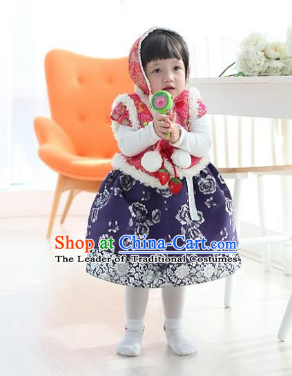 Asian Korean National Traditional Handmade Formal Occasions Girls Embroidery Hanbok Costume Pink Vest and Blue Dress Complete Set for Kids