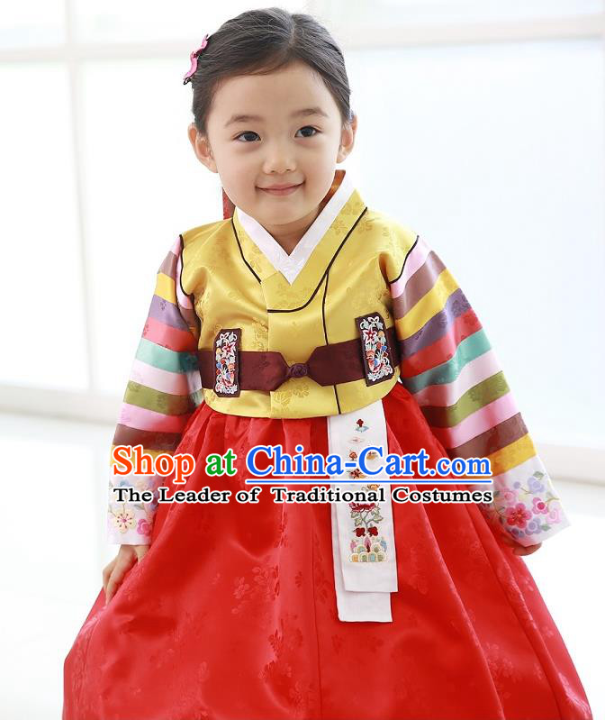Traditional Korean National Handmade Formal Occasions Girls Hanbok Costume Embroidered Yellow Blouse and Red Dress for Kids