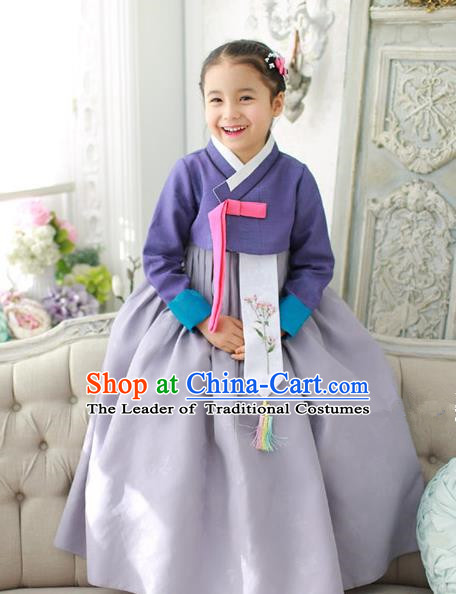 Traditional Korean National Handmade Formal Occasions Girls Hanbok Costume Embroidered Purple Blouse and Grey Dress for Kids