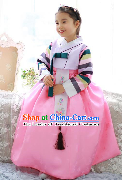 Traditional Korean National Handmade Formal Occasions Girls Palace Hanbok Costume Embroidered Lilac Blouse and Pink Dress for Kids