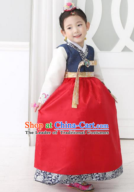Traditional Korean National Handmade Formal Occasions Girls Palace Hanbok Costume Embroidered Navy Blouse and Red Dress for Kids