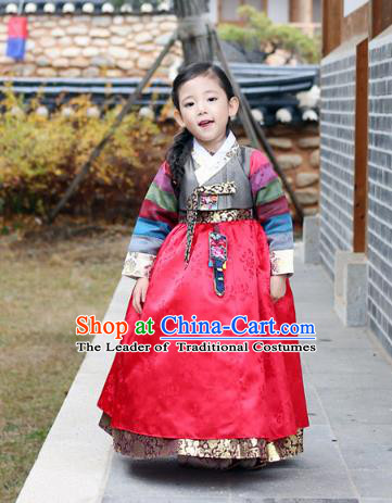 Asian Korean National Traditional Handmade Formal Occasions Girls Embroidery Hanbok Costume Grey Blouse and Red Dress Complete Set for Kids