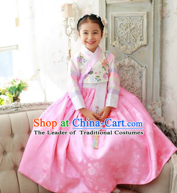 Korean National Handmade Formal Occasions Girls Embroidery Hanbok Costume White Blouse and Pink Dress Complete Set for Kids