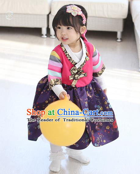 Traditional Korean National Handmade Formal Occasions Girls Embroidery Hanbok Costume Pink Blouse and Purple Dress Complete Set for Kids