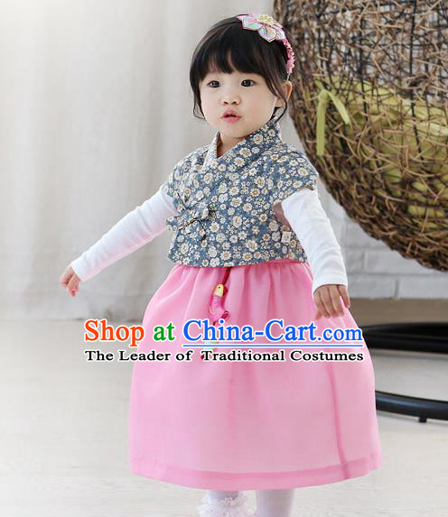 Traditional Korean National Handmade Formal Occasions Girls Embroidery Hanbok Costume Blue Blouse and Purple Dress Complete Set for Kids